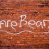 Schenectady NY Kare Bear 2009