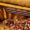 Adirondacks Essex Chain Parking Lot Old Truck Detail 25 October 2013