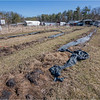 New York Slingerlands Farm 9 March 2021