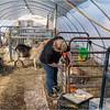 New York Slingerlands Farm 5 March 2021