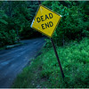 Berne NY Bradt Hollow Dead End June 2016