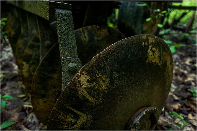 Middleberg NY Cotton Hill Cemetery Disc Harrower 1 June 2016