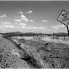 Elfrida, Arizona April 2008 Watch For Cattle