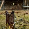 Slingerlands NY Krumkill Road November 2015 Fence 10