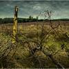 Slingerlands NY Krumkill Road November 2015 Fence 3