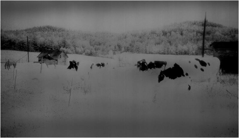 Adirondacks Reber Moran Farm 5 IR Film April 1997