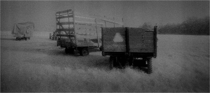 New Scotland NY Meads Lane Farm 10 IR Film May 1991