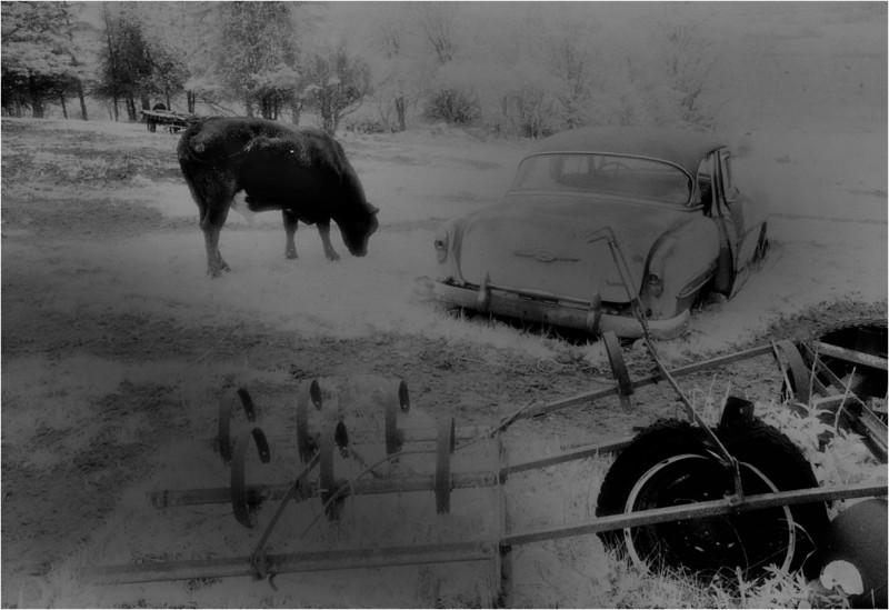Adirondacks Whallonsburg Wrisley Farm 1 IR Film April 1997
