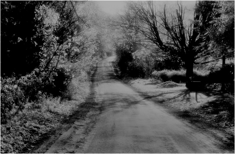 Rennselaer County NY Country Lane IR Film September 1981