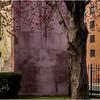 Troy NY April 2015 Spring Pastels Russel Sage 2