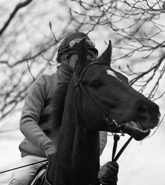 Ready Snodgrass at the Loudoun Hunt Point to Point