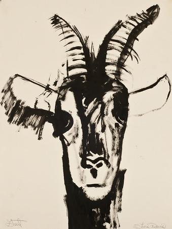 Goat, oil, 26 x 22