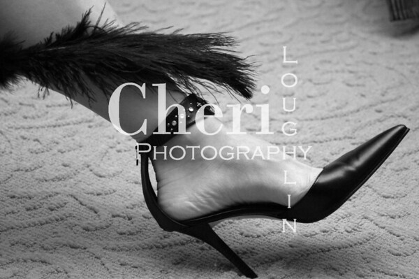 Shoe and Feather 0236