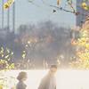 2016_Studio N Photo_P_L_Wedding-1671