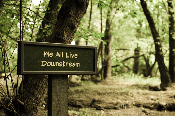 We All Live Downstream