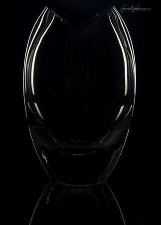 Black Fish 2013