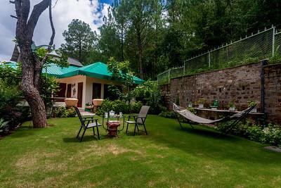 Lawn, Dharampur