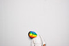Ronny+Brynn_NorCalStudioBooth-124