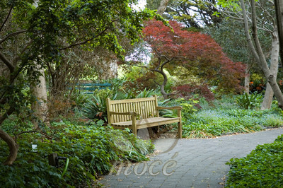 Park bench with footpath in foreground
