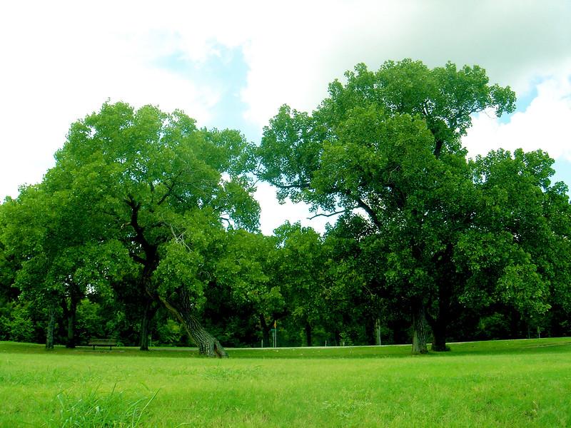 TrinityPark_2005-07-17_13-34-07_DSC00910_©StudioXephon2005