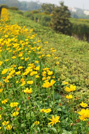 AmazingIndia_2009-12-05_11-55-38_DSC_1423_©StudioXephon2009_C1P