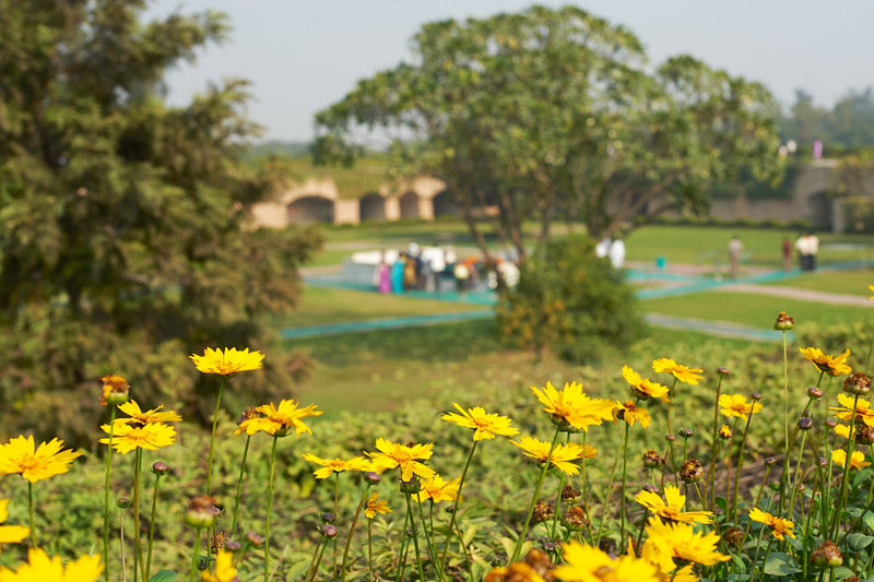 AmazingIndia_2009-12-05_11-56-20_DSC_1424_©StudioXephon2009_C1P
