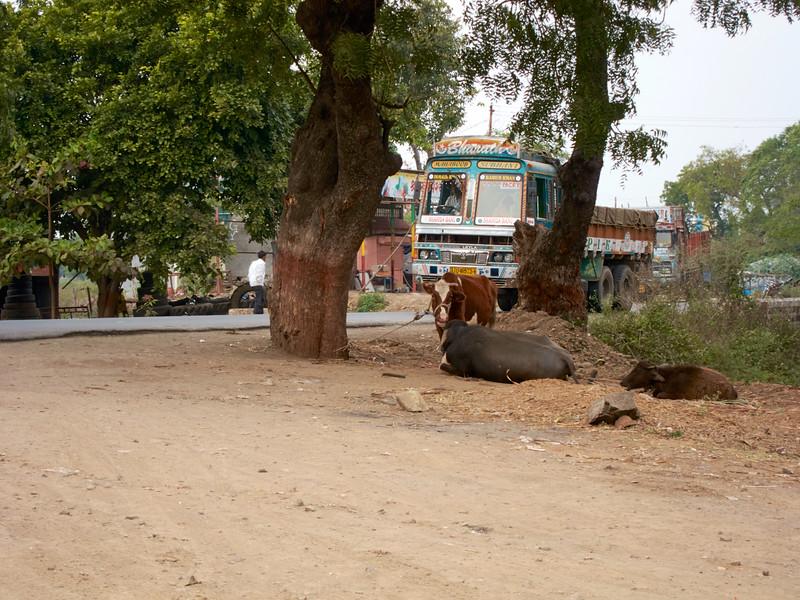 AmazingIndia_2010-12-31_03-19-21_Canon PowerShot S90_IMG_1381_©StudioXEPHON2010_C1P
