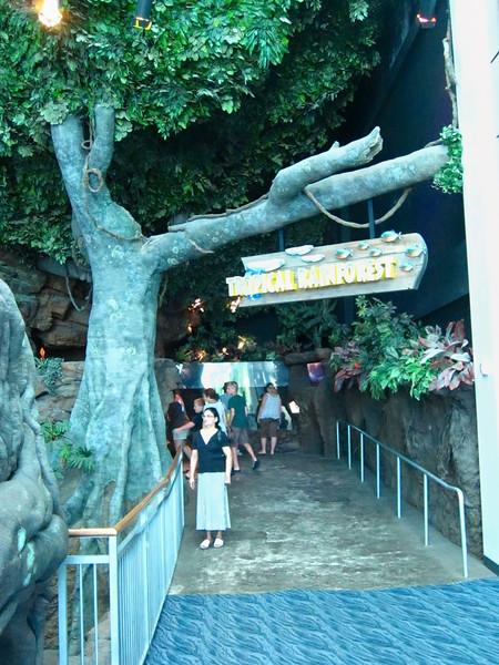 AquariumSmokies_2010-06-27_09-04-30_Canon PowerShot S90_IMG_0376_©StudioXephon2010_C1P