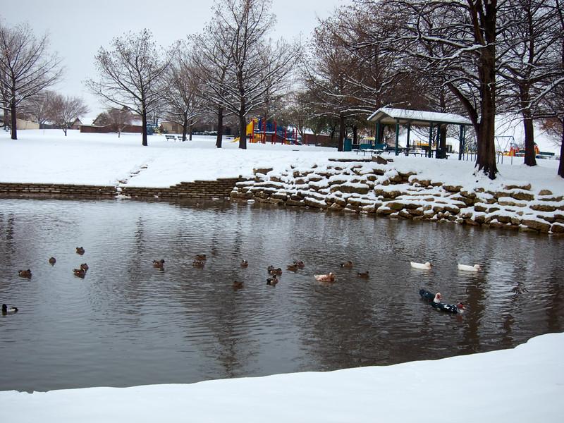 FW_WinterStorm_2010-02-12_12-28-23_IMG_1575_©StudioXephon2010_C1P