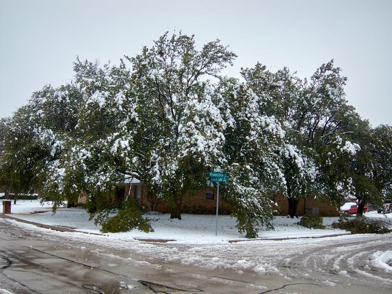 FW_WinterStorm_2010-02-12_12-26-55_IMG_1573_©StudioXephon2010_C1P