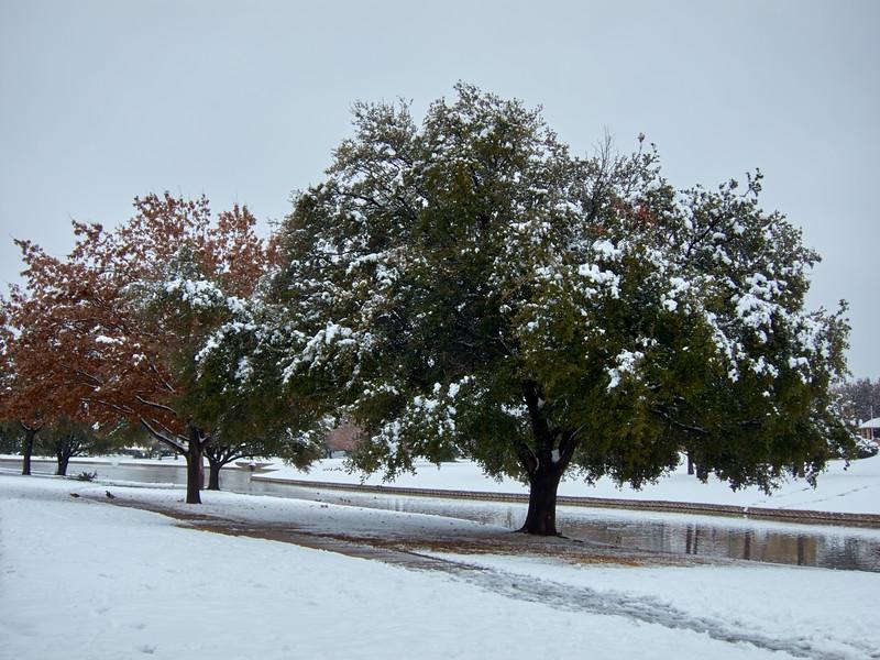 FW_WinterStorm_2010-02-12_12-27-10_IMG_1574_©StudioXephon2010_C1P