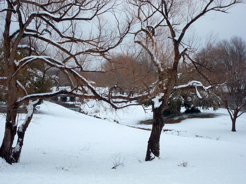 FW_WinterStorm_2010-02-12_12-42-11_IMG_1596_©StudioXephon2010_C1P