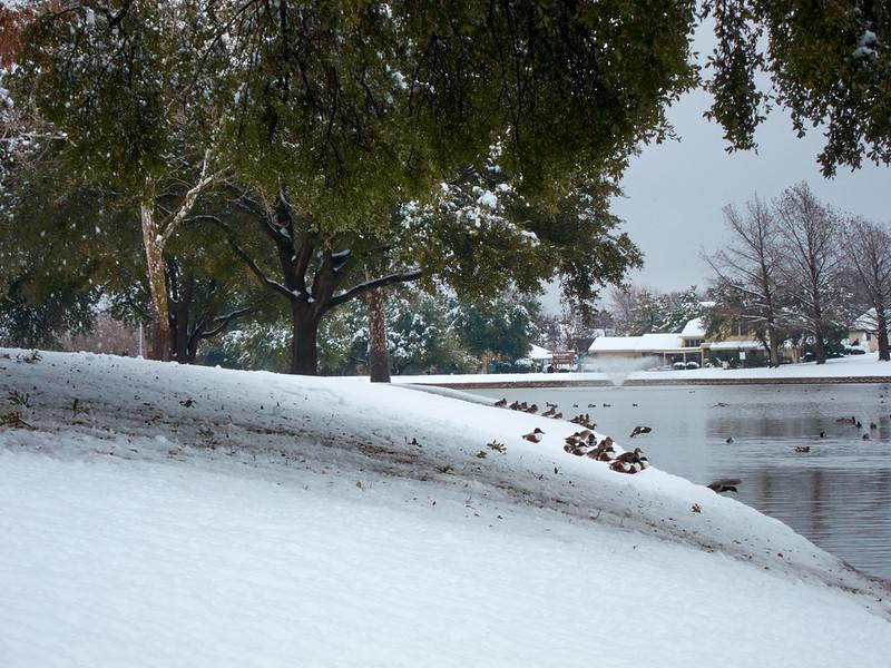 FW_WinterStorm_2010-02-12_12-29-38_IMG_1580_©StudioXephon2010_C1P
