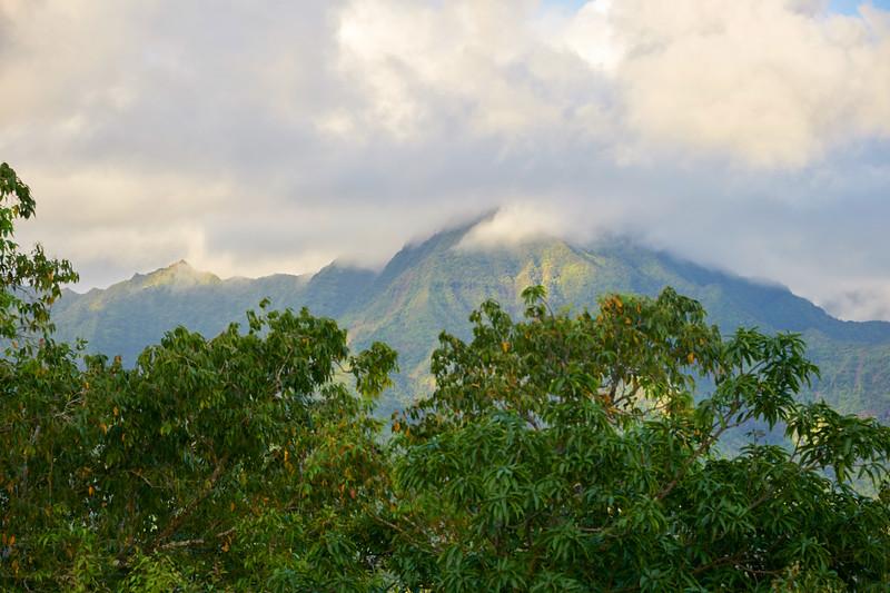 Kauai_2011-07-04_07-37-27_NIKON D700_DSC_0466_©StudioXEPHON2011_C1P