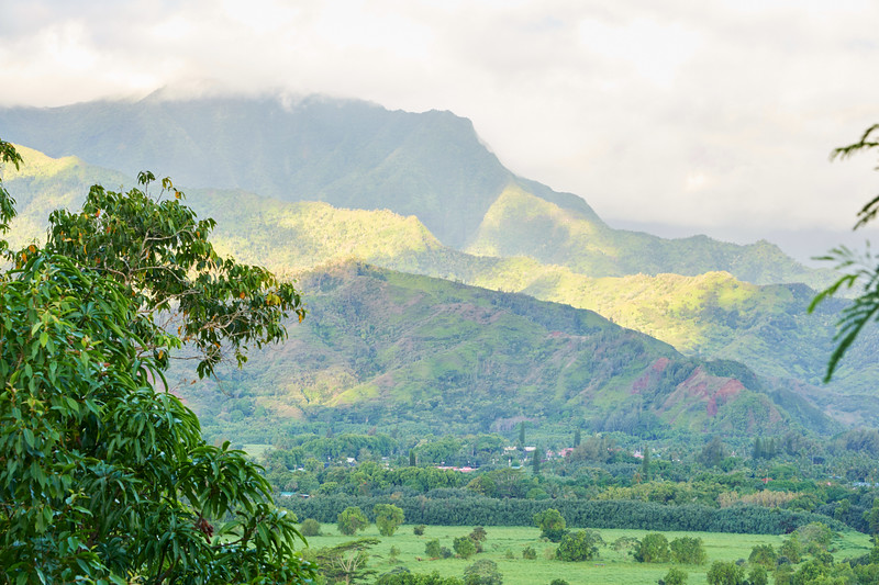 Kauai_2011-07-04_07-40-30_NIKON D700_DSC_0484_©StudioXEPHON2011_C1P