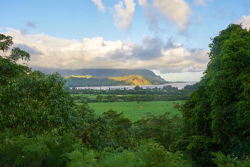 Kauai_2011-07-04_07-36-07_NIKON D700_DSC_0463_©StudioXEPHON2011_C1P