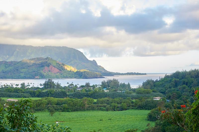 Kauai_2011-07-04_07-39-22_NIKON D700_DSC_0474_©StudioXEPHON2011_C1P