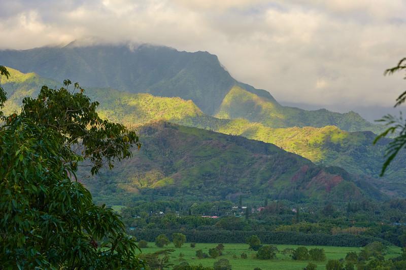 Kauai_2011-07-04_07-40-30_NIKON D700_DSC_0482_©StudioXEPHON2011_C1P