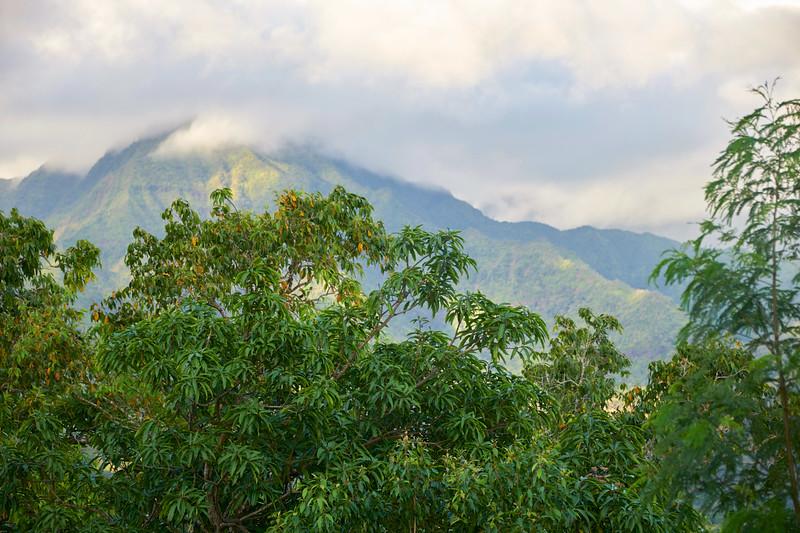Kauai_2011-07-04_07-37-29_NIKON D700_DSC_0467_©StudioXEPHON2011_C1P