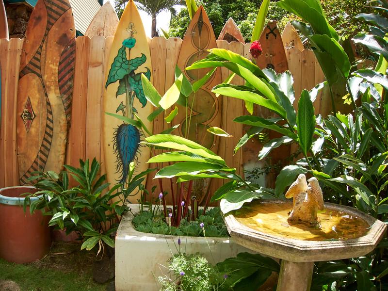 Kauai_2011-07-08_10-27-36_Canon PowerShot S90_IMG_2240_©StudioXEPHON2011_C1P