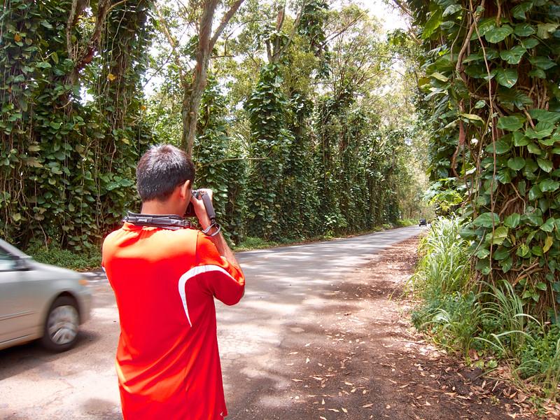Kauai_2011-07-06_12-08-26_Canon PowerShot S90_IMG_2124_©StudioXEPHON2011_C1P