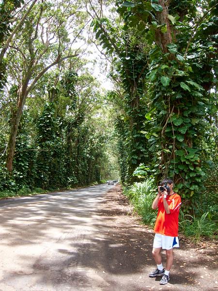 Kauai_2011-07-06_12-08-53_Canon PowerShot S90_IMG_2126_©StudioXEPHON2011_C1P