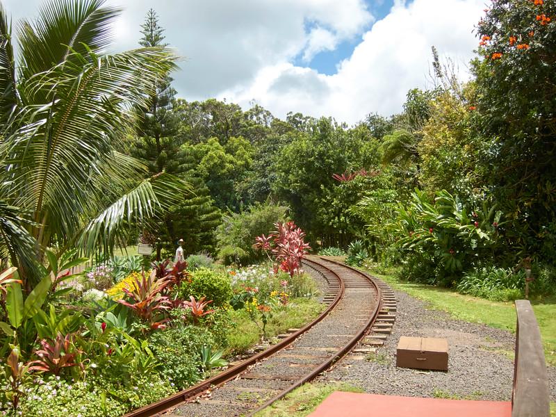 Kauai_2011-07-06_12-59-54_Canon PowerShot S90_IMG_2147_©StudioXEPHON2011_C1P