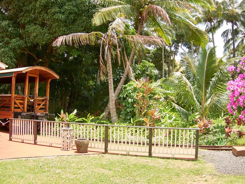 Kauai_2011-07-06_12-59-15_Canon PowerShot S90_IMG_2144_©StudioXEPHON2011_C1P