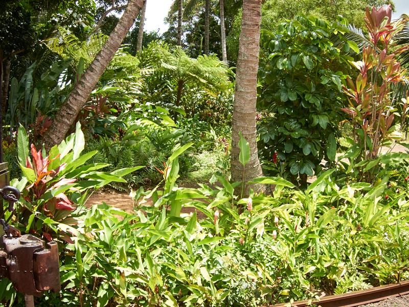 Kauai_2011-07-06_12-59-43_Canon PowerShot S90_IMG_2146_©StudioXEPHON2011_C1P