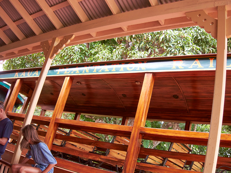 Kauai_2011-07-06_13-00-45_Canon PowerShot S90_IMG_2151_©StudioXEPHON2011_C1P