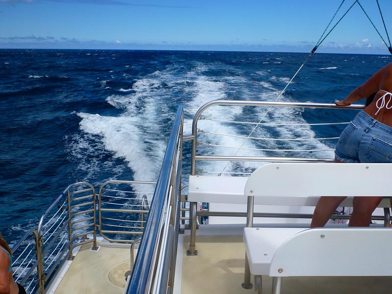 Kauai_2011-07-04_15-23-29_DMC-TS3_P1000195_©StudioXEPHON2011_C1P