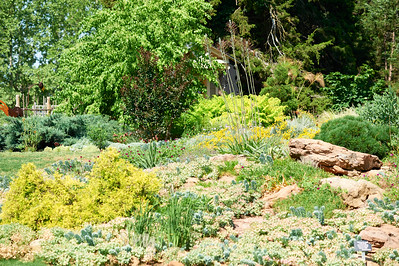 BotanicGardenOSU_2013-06-14_10-18-24_NIKON D700_DSC_3984_©StudioXEPHON2013_C1P