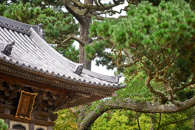 JapaneseTeaGardenSF_2015-08-19_15-00-30_NIKON D700__DSC5203_©StudioXephon2015_C1P