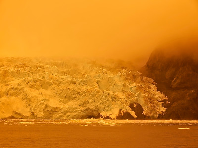KenaiFjords_BlueGold_2016_08_06_14-46-29_E-M1            _OLYMPUS M 12-40mm F2 8_P8061758_©2016_StudioXEPHON